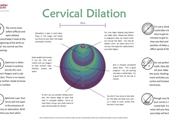 How To Mere Cervix Dilation At Home Homemade Ftempo