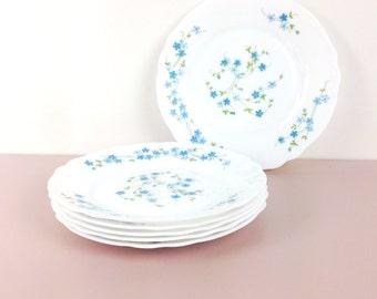 Lot of 6 flat plates opaline - motif Myosotis - Veronica - Arcopal