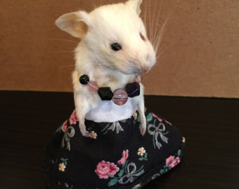 Taxidermied Mouse In Black and White Flowery Dress *FREE SHIPPING*