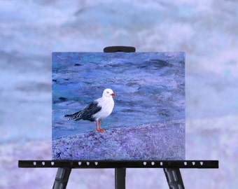 Seagull Painting, original art, bird painting, ocean painting, by the sea, NZ artist, 8 x 10 stretched canvas, free shipping