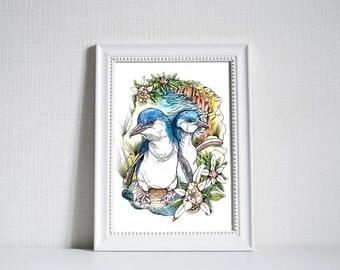 Australian Little Penguins (Fairy Penguins) Print