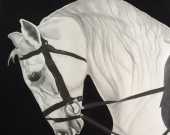 White Horse Original Pencil Drawing Graphite and Charchoal Horse Head Portrait Drawing