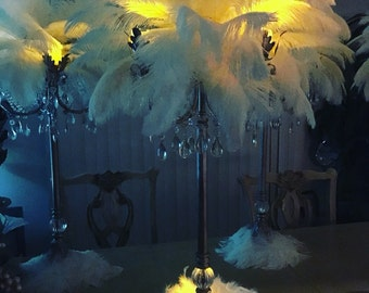 Rent wedding special occasions candelabras centerpieces flower bouquet ostrich feathers local only