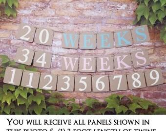 Pregnancy Weeks Photo Prop, Weeks Banner, Pregnancy Photo Prop, Weeks Photo Prop, Weeks of Pregnancy Photo Banner, Week by Week Pregnancy