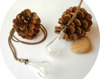 Real Dandelion Wish Natural Glass Necklace