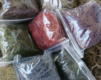 dried spanish moss (super value pack)