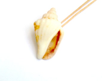 LANTA YAI -- Natural shell necklace, beige by All Things Natural