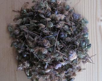 Hyssop - 2 oz (57 g) - Hyssopus officinalis