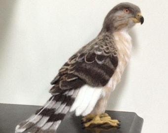 Needle Felted Juvenile Cooper's Hawk