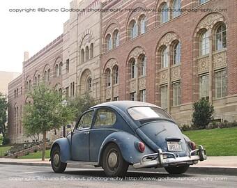 Volkswagen no. 1 - UCLA, CA  2007 - Color