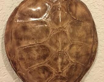 Green Sea turtle shell replica