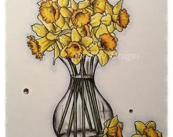 Jo's Daffodils  - image no 50