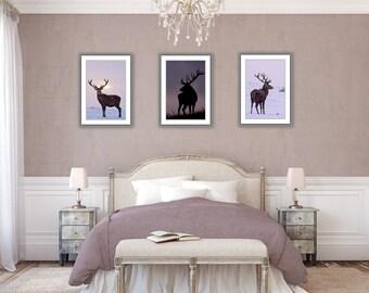 3 for 2 offer - unframed prints - deer art - 30x20cm/12x8in - 45x30cm/18x12in - 60x40cm/24x16in