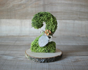 Moss number, Moss Wedding Decorations, Forest Wedding, Moss Covered Table Numbers, moss numbers, woodland wedding, wedding table numbers