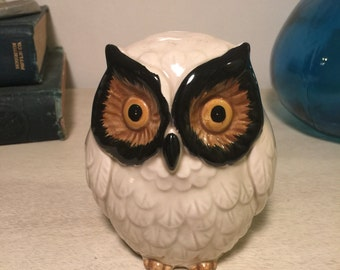 Vintage Ceramic Owl Bank Handpainted 1960s Home Decor