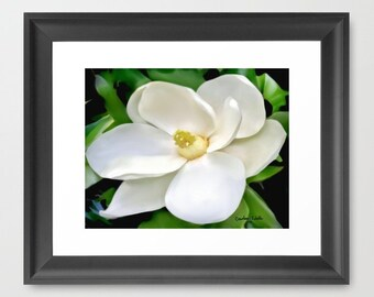 Southern Magnolia Fine Art Watercolor Print, Louisiana  Botanicals