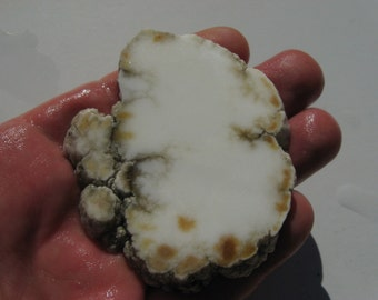 Tick Canyon Howlite or Howelite rough slab with inclusions of fluorescent yellow colemanite