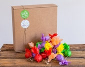 Pack of 50 Wildflower's seed bombs