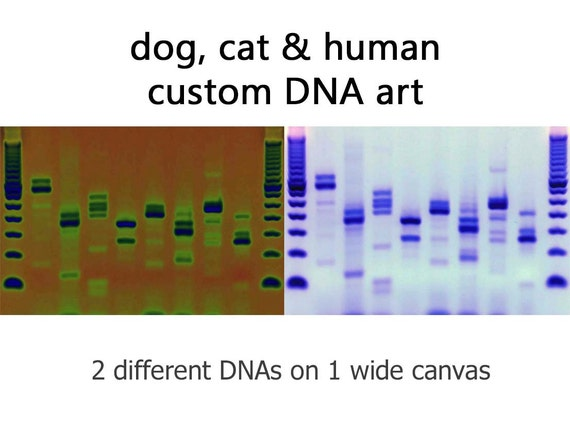 Dogs cats people custom dna canvas metal genetics wall art for Personalized dna art