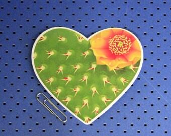 Cactus Heart Sticker