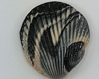 Black and white polymer clay marbled scallop shell
