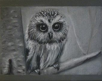 Owlet Original painting pastel Pastel bird Painting bird Owl paint Owl pastel Bird Owl  pastel trend Owl decor Bird decor Home decor