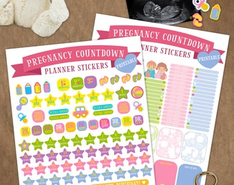 Countdown to pregnancy stickers, Pregnancy Planner Stickers, baby planner, Pregnancy Tracker, Tracker Stickers, Sticker Sheet