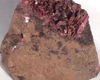 Dark Red to Magenta Erythrite Crystals on Original Matrix