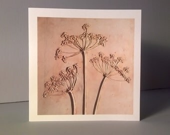 Three Fennel Seed Heads Greetings Card
