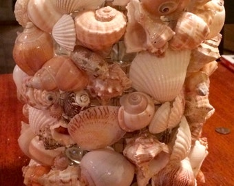 Beautiful Table Top Sea Shell Lamps