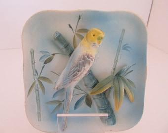 NAPCO Parakeet Porcelain Square Wall Plate