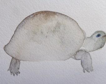 Original turtle watercolor painting