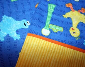 Sesame Street Pillow Case