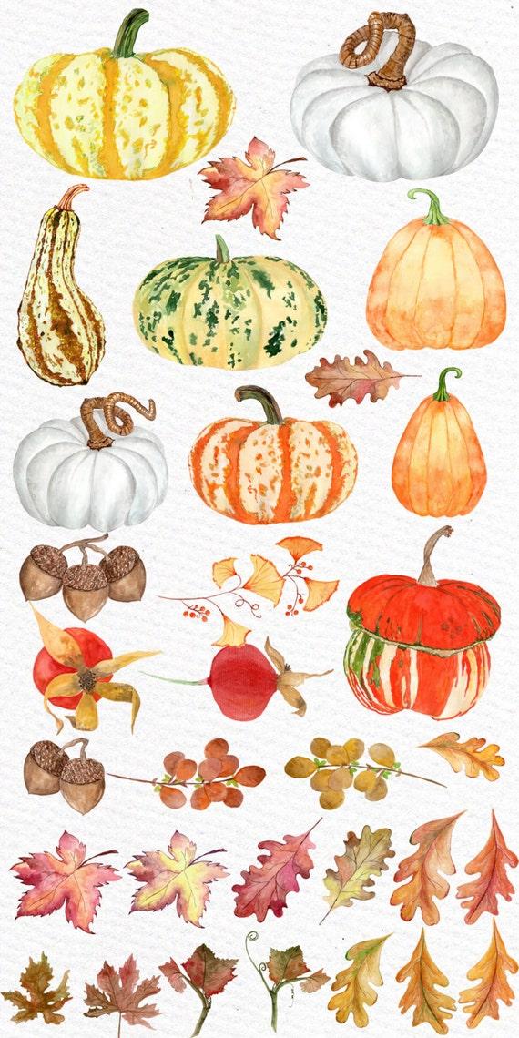 On Sale 30 Watercolor Pumpkin Clipart Quot Autumn Clipart