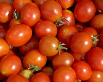Cherry Tomato- Riesentraube- 70 day INDETERMINATE- 25 seeds