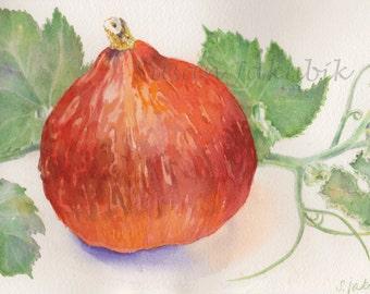 Squash Original Watercolor, Red Kuri Squash Watercolor