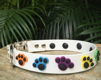 Better-than-leather Paws Dog Collar