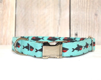 Shark Attack Dog Collar - SALE