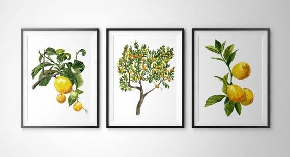 Wall Decoration Tree Painting: Items Similar To Botanical Prints