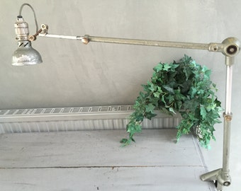 Industrial hinged lamp