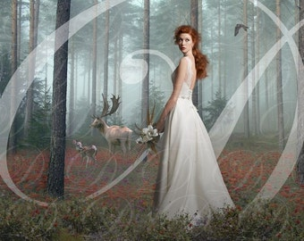 Photoshop Wedding Fantasy, Put Your Picture In A New Scene