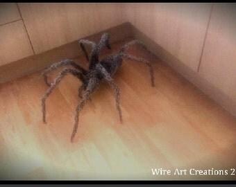Giant spider wire sculpture.