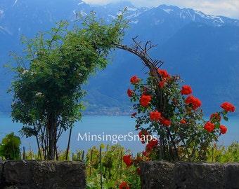 Serene Montreux, Switzerland Lake Geneva Photo Print