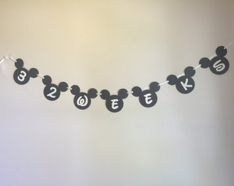 SALE!!!!! Mickey Mouse Weekly Maternity Photo Banner; Disney