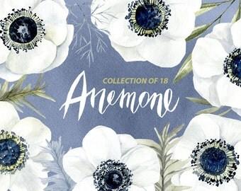 Watercolor flower clipart: 18 white anemone, Aquarelle Digital Clip Art, watercolour boho floral clipart