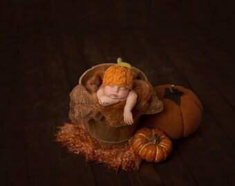 Newborn Pumpkin Hat/Knit Cable Pumpkin Baby Hat/Pumpkin Beanie Photo Prop
