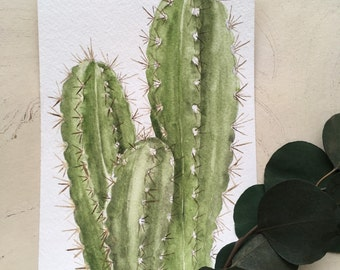 Original Watercolor Cacti