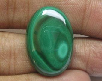 Malachite cabochon 17 x 25 mm oval shape semi precious gemstone cabochon id73