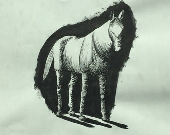 Sketched Horse