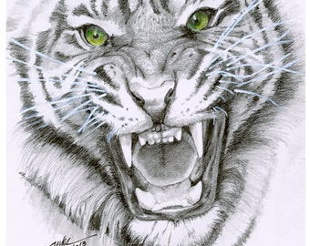 Tiger Eyes (Mounted Original)